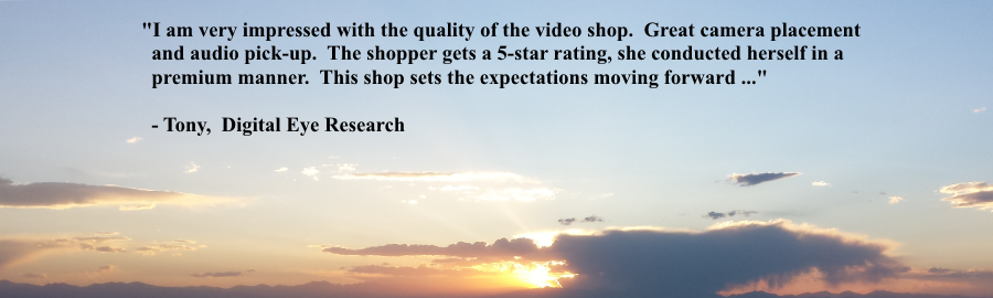 Automotive video shopping services for mystery shopping company